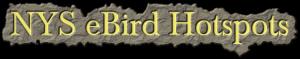 NYS_ebird_hotspots